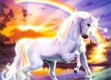 unicorn white horse